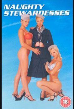 Yaramaz Hostesler – The Naughty Stewardesses erotik