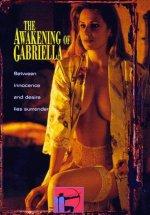 The Awakening of Gabriella Erotik Film izle
