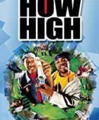 Süper Ot - How High (2001) HD Türkçe dublaj izle